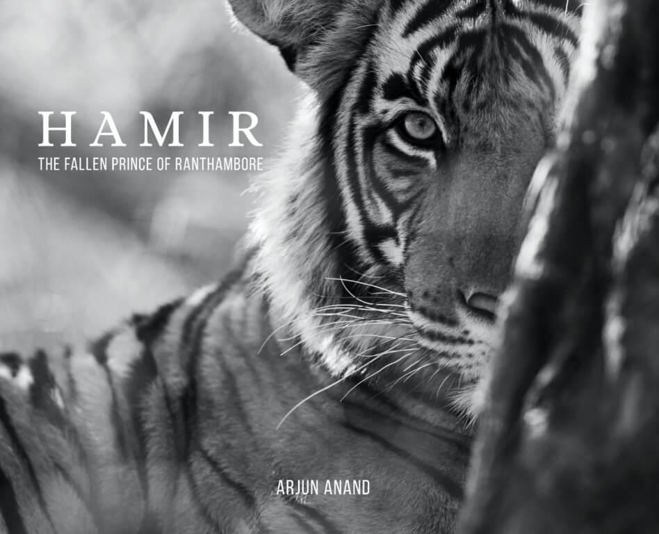 Hamir The Fallen Prince of Ranthambore 1